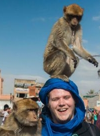 Monkey Business in Marrakech